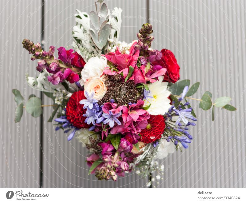bridal bouquet Environment Nature Plant Flower Rose Tulip Ivy Fern Orchid Leaf Blossom Blossoming Bride Bouquet Bud Blossom leave Eucalyptus blossom Wood