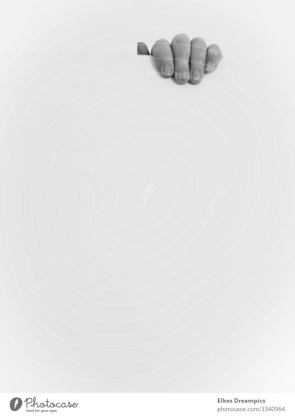 hand Hand Discover Esthetic Authentic Exceptional Natural Patient Unwavering Minimalistic Black & white photo Interior shot Day Deep depth of field
