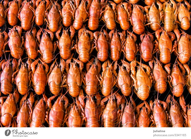 Many crawfishes Animal Red Tradition Crawfish Cancer amphibian many Cooking Tasty Meal food russian background Consistency Colour photo Multicoloured