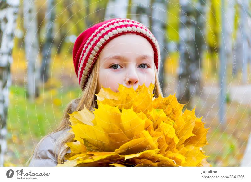 Girl with bouquet from sheets Herbs and spices Child Schoolchild Woman Adults Infancy Plant Autumn Leaf Hat Blonde Cute Red White girl Lady Caucasian European