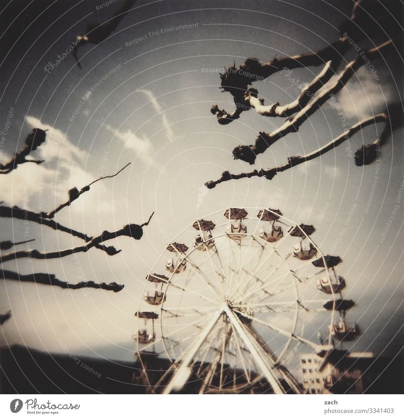Have a good time Fairs & Carnivals Sky Clouds Beautiful weather Plant Tree Branch Town Ferris wheel Amusement Park Feasts & Celebrations Joy Analog Slide