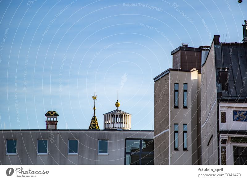 Variation of roofs Leipzig Germany Europe Town Downtown House (Residential Structure) Church Manmade structures Building Architecture Wall (barrier)