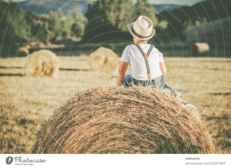 Back view of a Pensive child in the straw field Lifestyle Vacation & Travel Summer Human being Masculine Child Infancy 1 8 - 13 years Nature Landscape
