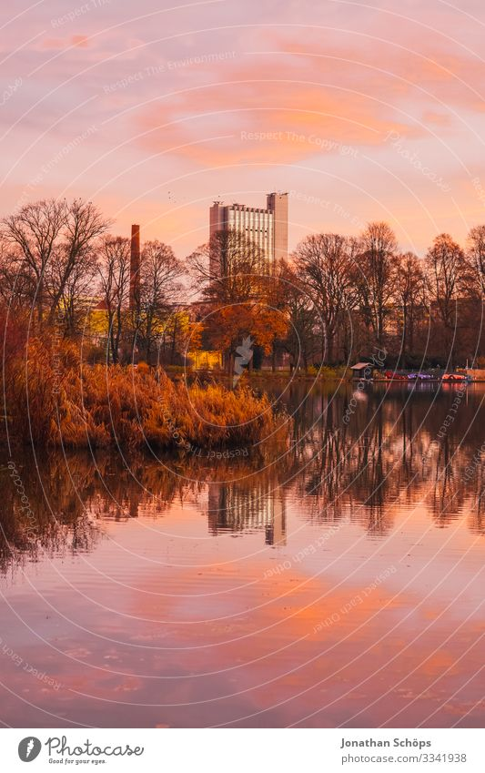 Schlossteich Chemnitz with view of the hotel Environment Nature Water Autumn Climate Beautiful weather Park Coast Lakeside Pond Esthetic Evening sun Saxony