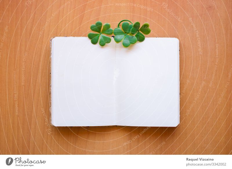 Open and blank notebook Office Business Leaf Stationery Paper Write Brown Green White Clover Notice Blank post wood empty graphic resource Communication patrick