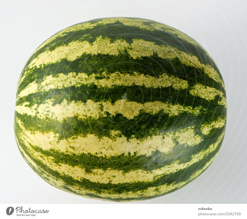 big green striped whole watermelon Fruit Dessert Nutrition Eating Vegetarian diet Diet Summer Nature Fresh Large Juicy Green Red White Water melon agriculture