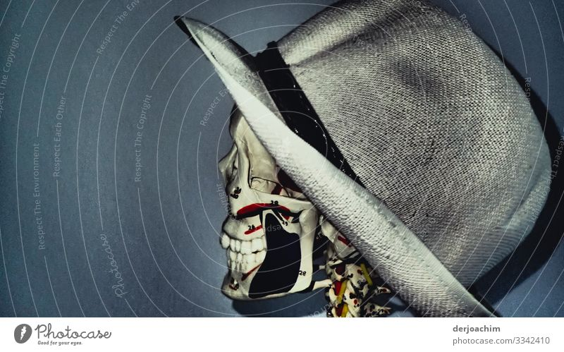 Potrait with hat. A skeleton with hat from the side to the viewer. The teeth are well visible. Joy Well-being Androgynous Head 1 Human being Beautiful weather