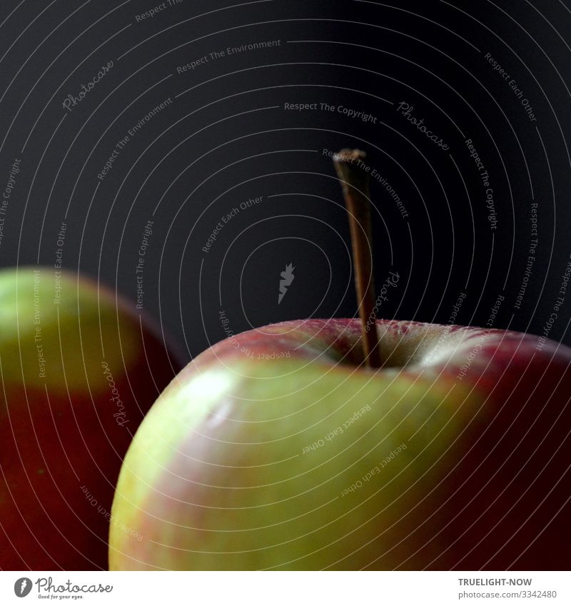 Apple on stem in square (detail) Food Fruit Nutrition Organic produce Vegetarian diet Diet Fasting Healthy Healthy Eating Wellness Life Harmonious Well-being