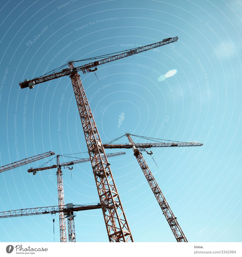 City giraffes (9) Work and employment Workplace Construction site Industry Craft (trade) Technology Sky Beautiful weather Crane Stand Athletic Tall Town Moody