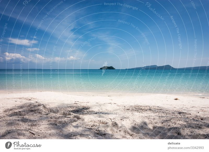 Dreaming of paradise Sunlight Deserted Exterior shot Colour photo Palm tree Coast Bay Water Sky Landscape Beautiful weather Nature Ocean Island Waves