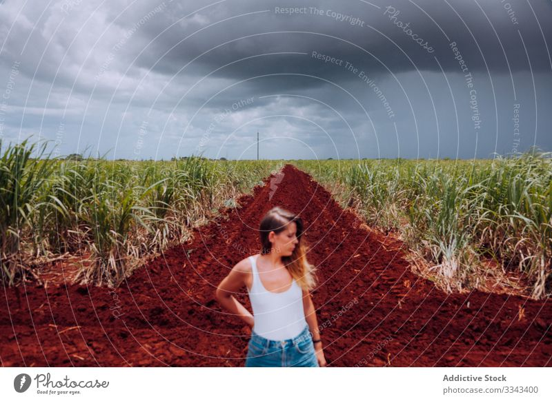 Female tourist amid green plants at farmland woman field countryside rural overcast cloudy heaven sky female casual standing summer nature agriculture young