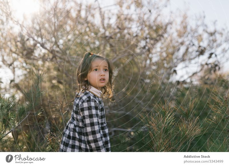 Ethnic girl playing in countryside child having fun forest kid nature calm childhood weekend activity trip ethnic day lovely vacation holiday inspiration