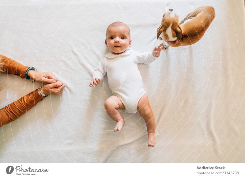 Little baby lying on bed playing with dog infant newborn home adorable curious child calm small cute kid sweet pajama casual innocent peaceful open mouth
