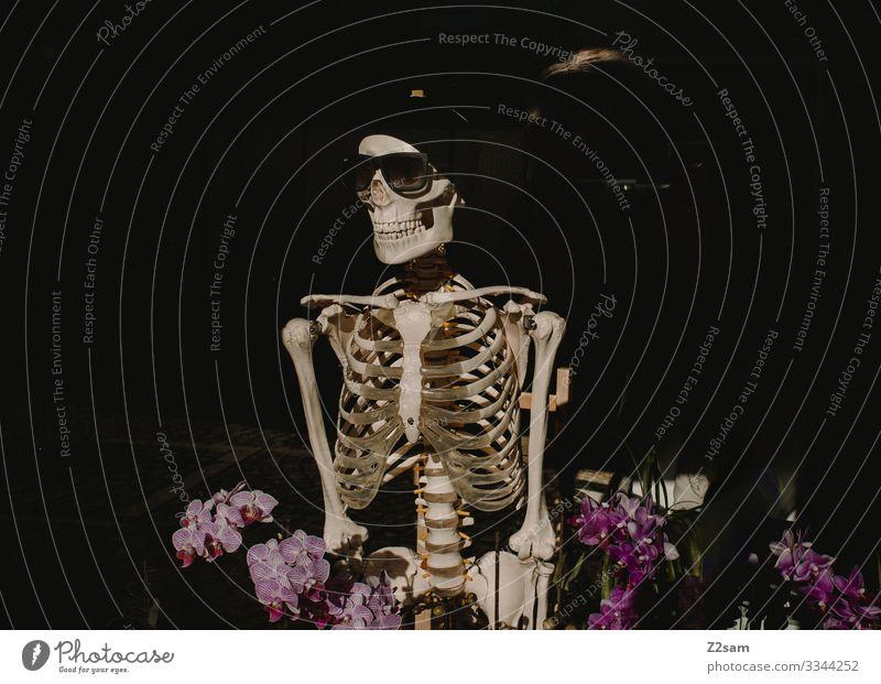 Death in the flower field Body 1 Human being Fashion Sunglasses Cap Smiling Stand Creepy Senior citizen Surrealism Mountain bike Flower Skeleton Death's head