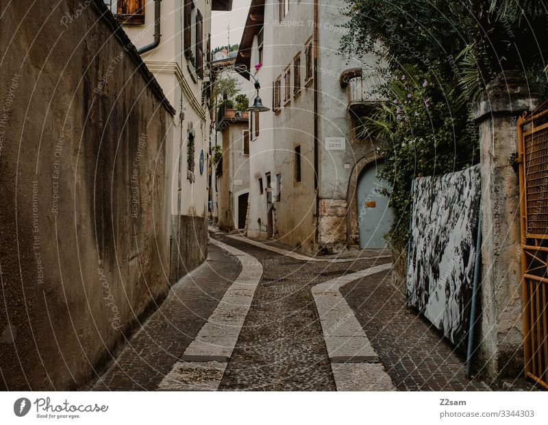 Arco | Lake Garda Place ways Mediterranean Italy Village Italian northern italy Alley Idyll dwell Indigenous Southern warm Summer Colour photo Exterior shot