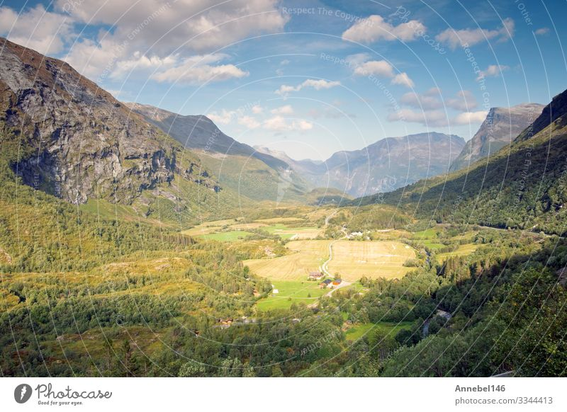 Beautiful top view mounrain summer landscape in Norway Blue sky Vacation & Travel Tourism Summer Ocean Mountain Environment Nature Landscape Sky Clouds Tree