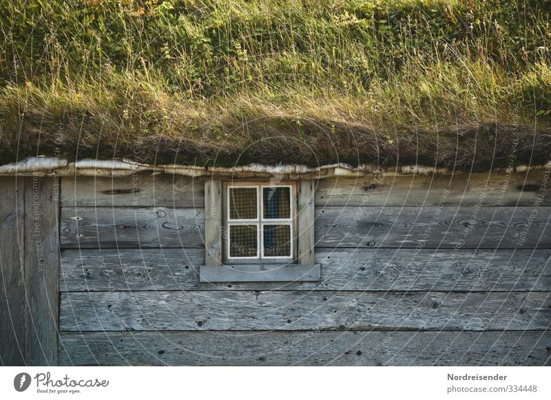 Nature Summer Calm House (Residential Structure) Window Meadow Life Architecture Wood Natural Facade Living or residing Friendliness Hut Well-being Harmonious
