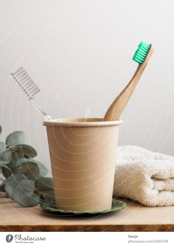 Two toothbrushes in one cup, sustainable lifestyle Lifestyle Personal hygiene Toothbrush Wood Statue Mug Healthy Well-being Hip & trendy Clean Health care