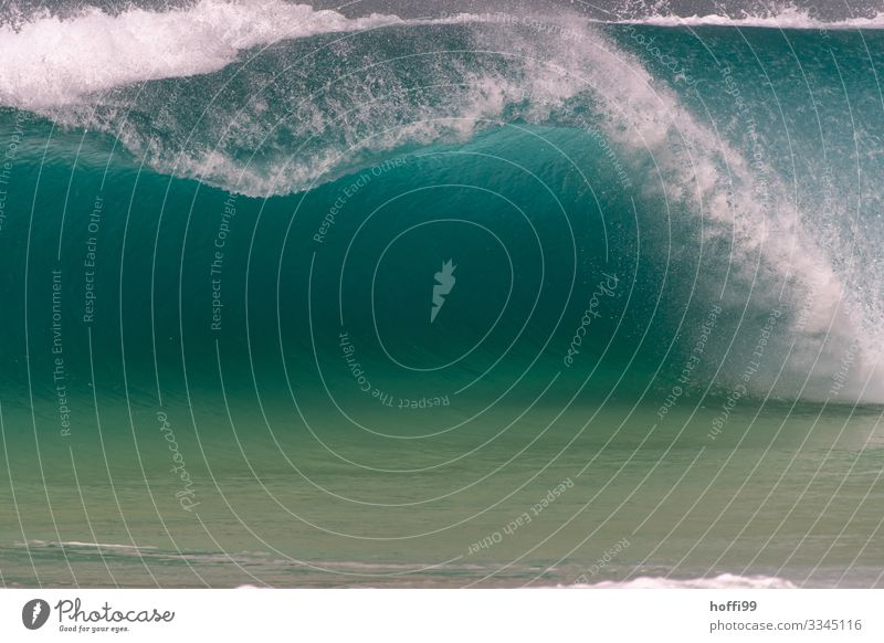 Turquoise wave with cavity that breaks Water Summer Beautiful weather Waves Ocean Swell White crest Surf Foam Esthetic Threat Elegant Fluid Gigantic Wet Clean