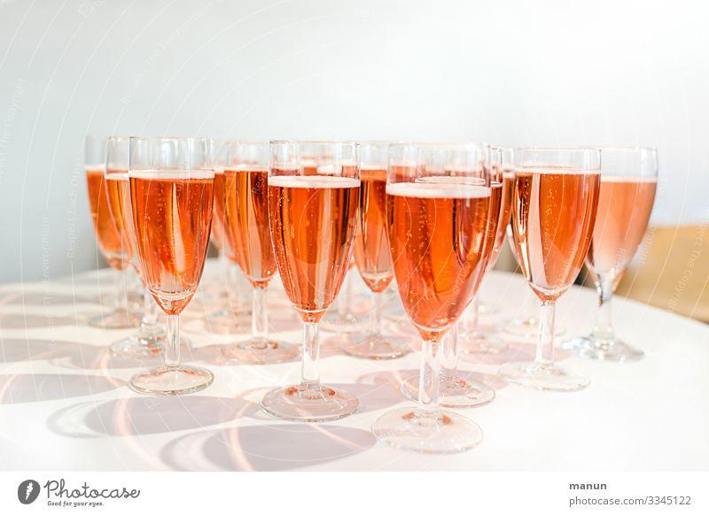 Joy Healthy Lifestyle Feasts & Celebrations Party Moody Birthday Joie de vivre (Vitality) To enjoy Delicious Wedding Beverage Drinking Illness Event