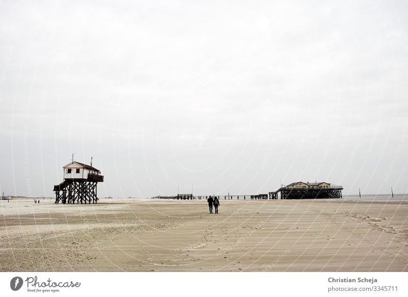 two Harmonious Relaxation Calm Far-off places Freedom Beach Ocean Couple 2 Human being Coast North Sea coast North Sea beach St. Peter-Ording Sandy beach Going