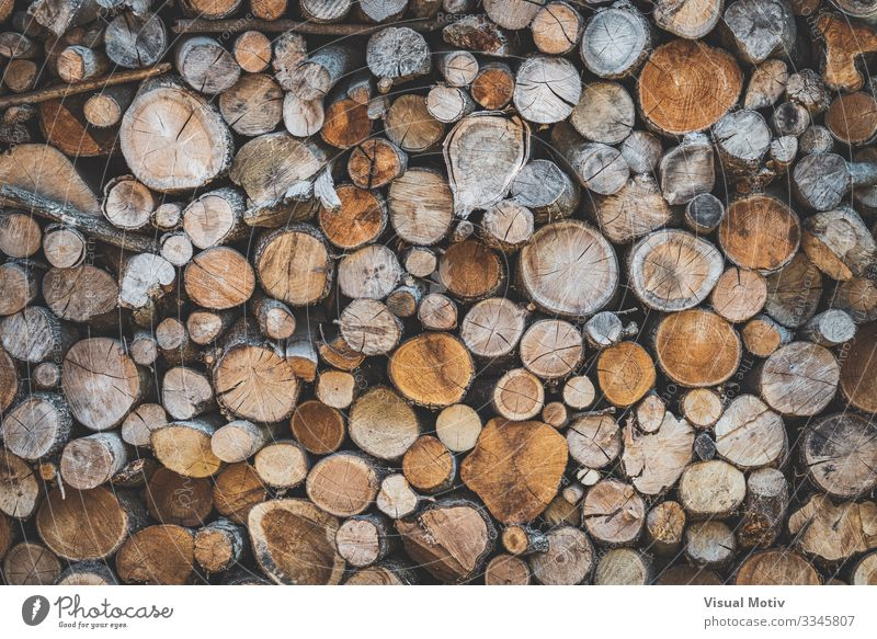 Stacked wood logs Environment Nature Tree Forest Wood Old Natural Brown Colour Stacked Wood logs Wood Logs exterior Consistency abstract photography Timber