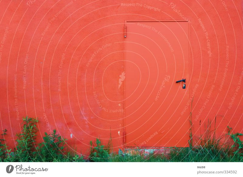 Colour Red Wall (building) Eroticism Grass Funny Wall (barrier) Exceptional Door Closed Crazy Simple Symbols and metaphors Curiosity Mysterious Hot