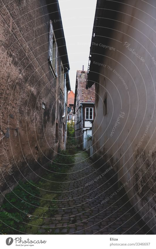gas Village Deserted Alley Lanes & trails Cobblestones Half-timbered house Old Dark Narrow Loneliness Going Gloomy Moss Facade Wall (barrier) rancid Dirty