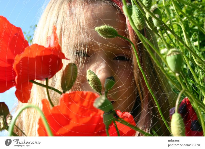 Child Nature Flower Face Longing Poppy