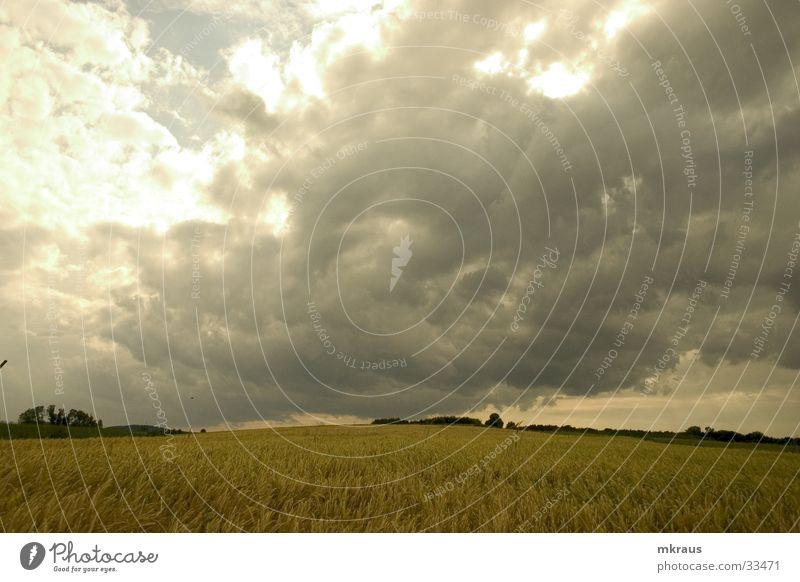 Clouds Far-off places Landscape Field