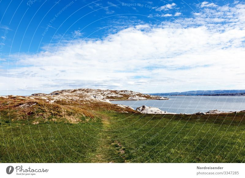By the Porsangerfjord Vacation & Travel Tourism Adventure Far-off places Freedom Ocean Hiking Nature Landscape Elements Water Sky Clouds Summer