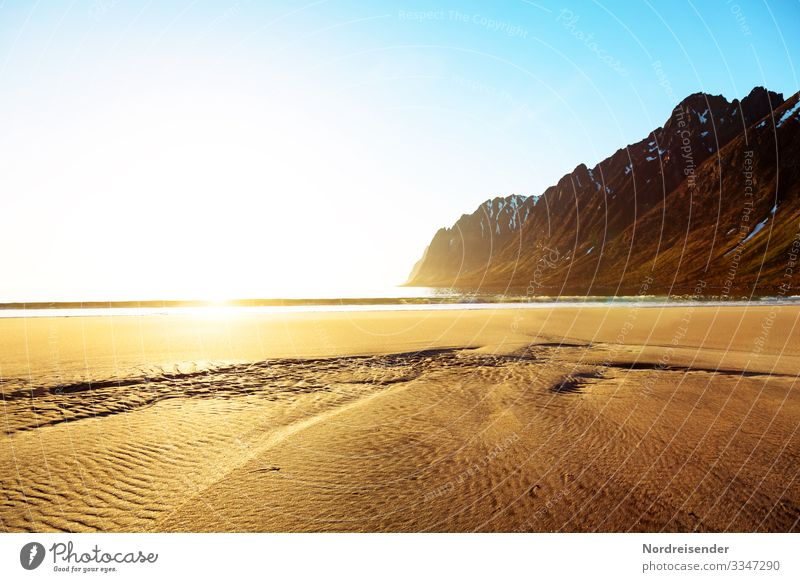 Sunrise on the beach of Senja Vacation & Travel Adventure Far-off places Freedom Nature Landscape Elements Sand Water Cloudless sky Sunset Sunlight Summer