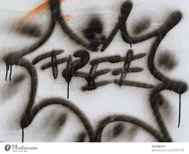 free Wall (barrier) Wall (building) Graffiti Communicate Free Town Black White Emotions Freedom Colour photo Exterior shot Deserted Copy Space bottom Day