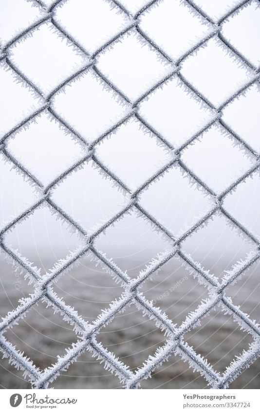 Frozen metal fence. Wire fence covered with snow Winter Snow Bad weather Fog Ice Frost Metal Steel Freeze Cold White Protection Safety (feeling of) background
