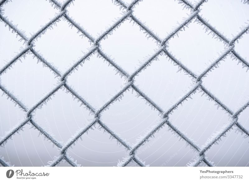 Metal wire fence covered with snow. Cold temperatures Winter Snow Bad weather Fog Ice Frost Steel Freeze White Protection Safety (feeling of) background Barrier