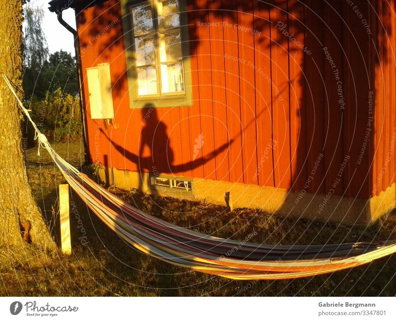 an empty hammock Relaxation Calm Summer Summer vacation Loneliness Hammock Colour photo Exterior shot Deserted Day Light Shadow Silhouette