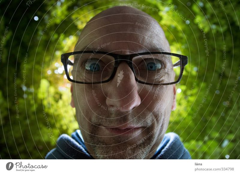 Human being Man Plant Tree Face Adults Environment Head Masculine 45 - 60 years Eyeglasses Curiosity Whimsical Bald or shaved head Designer stubble Leaf canopy