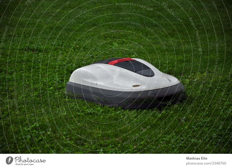 Lawn mower robot Landscape Plant Grass Garden Gray green White Lawnmower Mow the lawn Robot Lawn mowing robot Comfortable Helper Garden helper Gardening