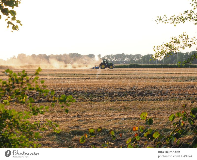 Farmers at work Agriculture Forestry Machinery Tractor Landscape Earth Cloudless sky Summer Drought Field march Work and employment Driving Natural Strong Brown