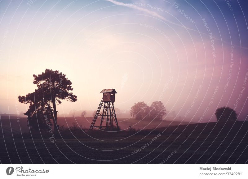 Rural landscape with silhouette of a hunting tower Hunting Nature Landscape Sky Spring Summer Autumn Fog Tree Meadow Field Dark Inspiration Far-off places