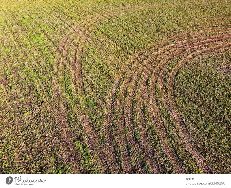 Pattern from tractor tracks on a green field Nature Spring Field Precision area flight Background picture pattern above Aerial view bird's eye view copter