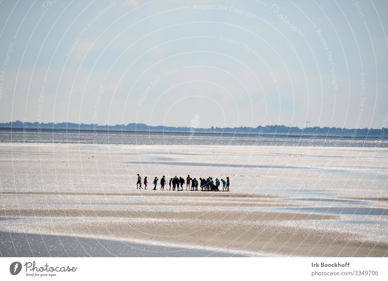 Group of school children in the middle of the Wadden Sea at the North Sea Vacation & Travel Tourism Trip Ocean Mud flats Human being Youth (Young adults)