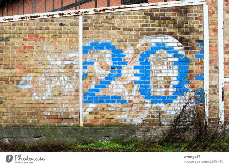 Blue number 20 on brick wall Digits and numbers Colour photo Deserted Exterior shot Wall (building) Wall (barrier) Copy Space left brickwork house wall