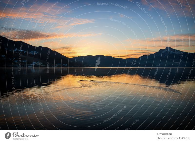 Sunrise at Mondsee Harmonious Relaxation Calm Nature Water Sky Sunset Autumn Winter Beautiful weather Alps Mountain Lakeside Observe To enjoy Together Idyll