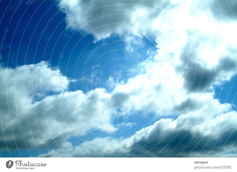 canopy Clouds Sky Weather Sun