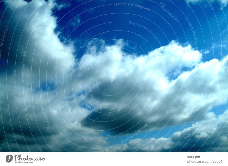 canopy Clouds Sky Weather Blue Exterior shot