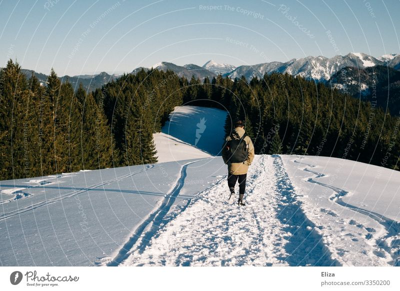 A man in the snow on a mountain on a sunny day with a view of the Alps. Hiking in winter. Human being Masculine Young man Youth (Young adults) Man Adults