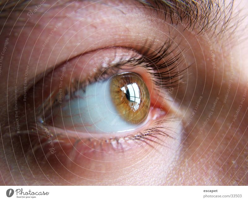 Woman Human being Eyes