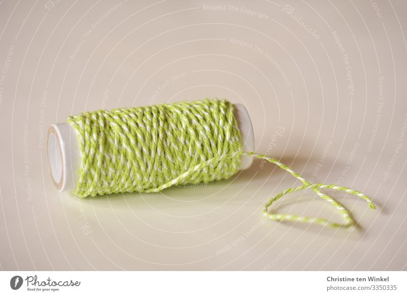 String in green and white on a cardboard roll Decoration Kitsch Odds and ends Gift wrapping loop belt Bright Beautiful Green White Creativity Arrangement