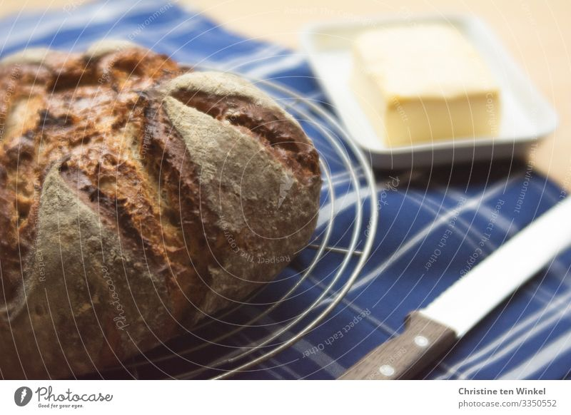 fresh bread, butter and bread knife on a blue and white chequered cloth Food Bread Butter Nutrition Breakfast Slow food Knives Dish towel Line Authentic